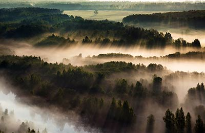 Litvánia Kompok